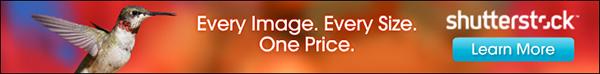 buy download shutterstock vectors