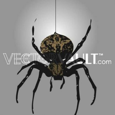 image free vector logo graphic black widow spider