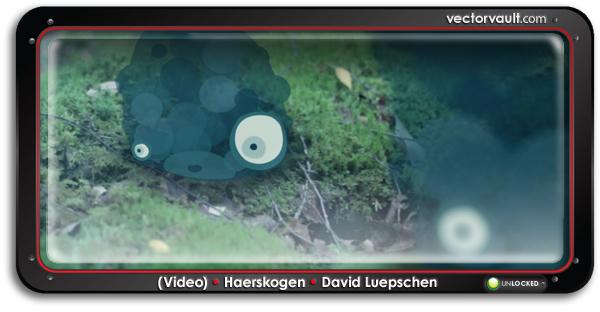 video-Haerskogen-David-Luepschen