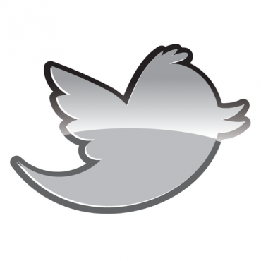 twitter-logo-icon-buy-vector-twitter