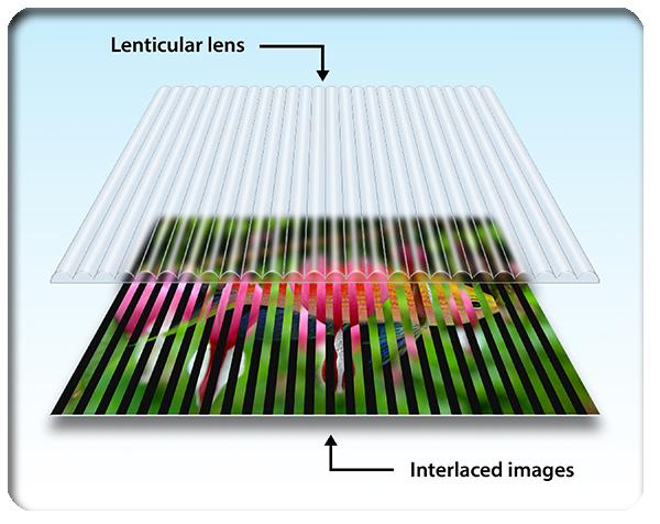 lenticular-printing-design-toronto-canada-adam-jarvis